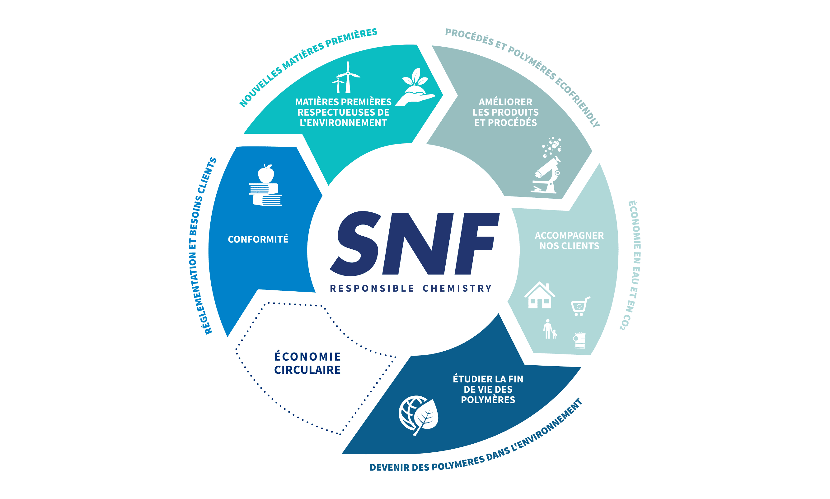 SNF Graphic Chart Image